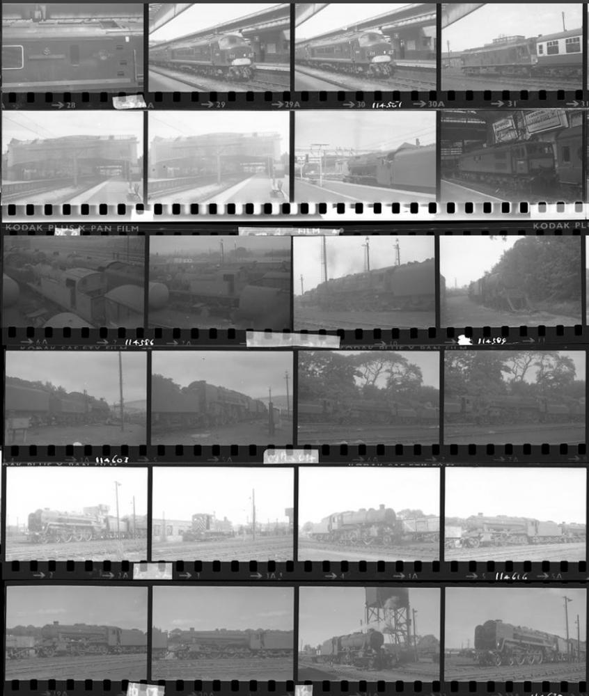 Approximately 100, 35mm Negatives. Includes Derby,