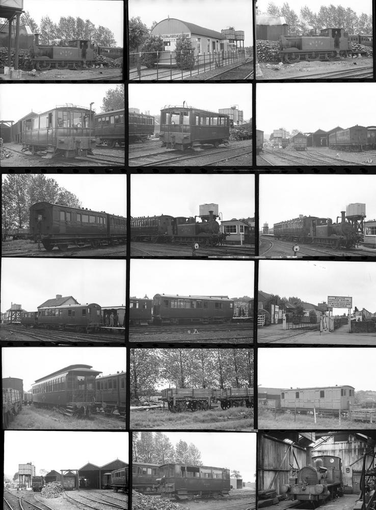 Approximately 31 35mm Negatives. Taken In June