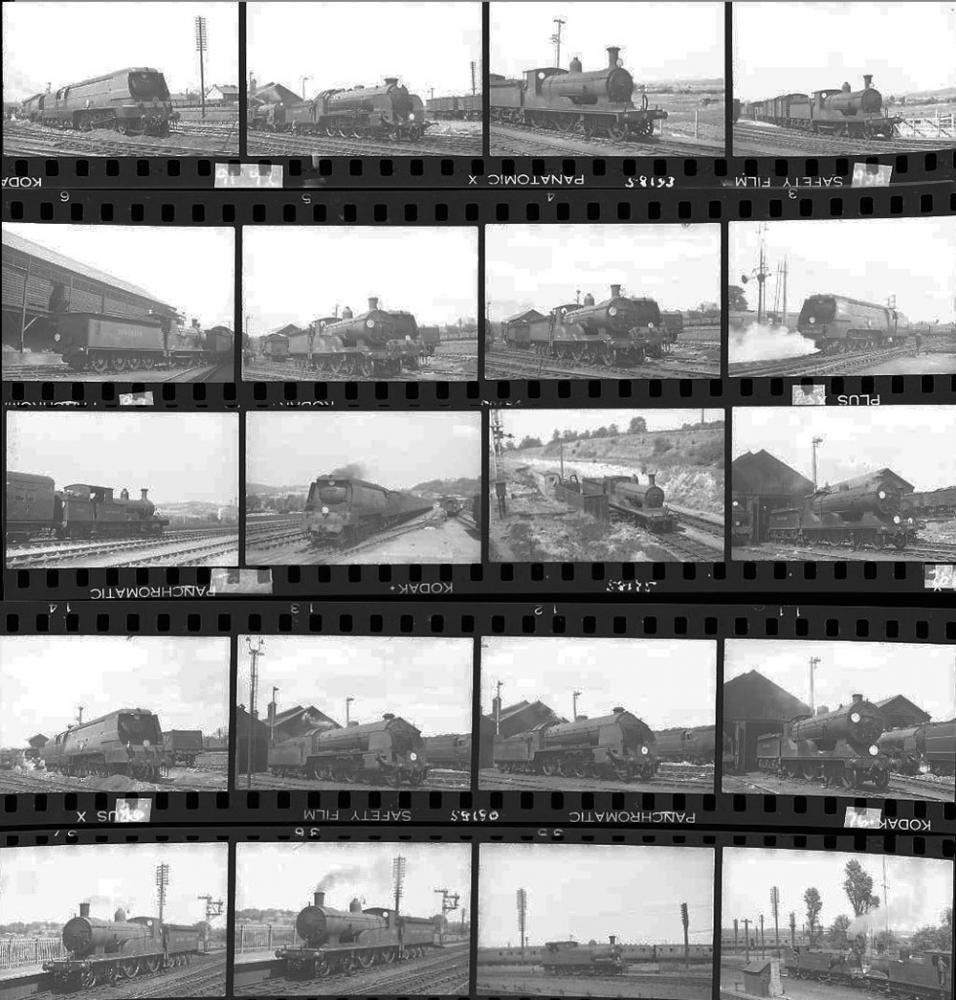 Approximately 100, 35mm Negatives. Includes Nine