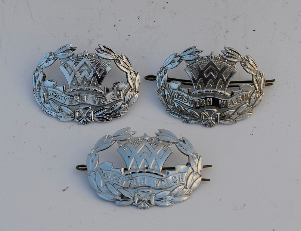 3 Western & Welsh DRIVERS CAP BADGES. All Three In