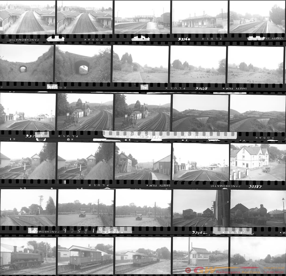 Approximately 70, 35mm Negatives. Includes Sugar