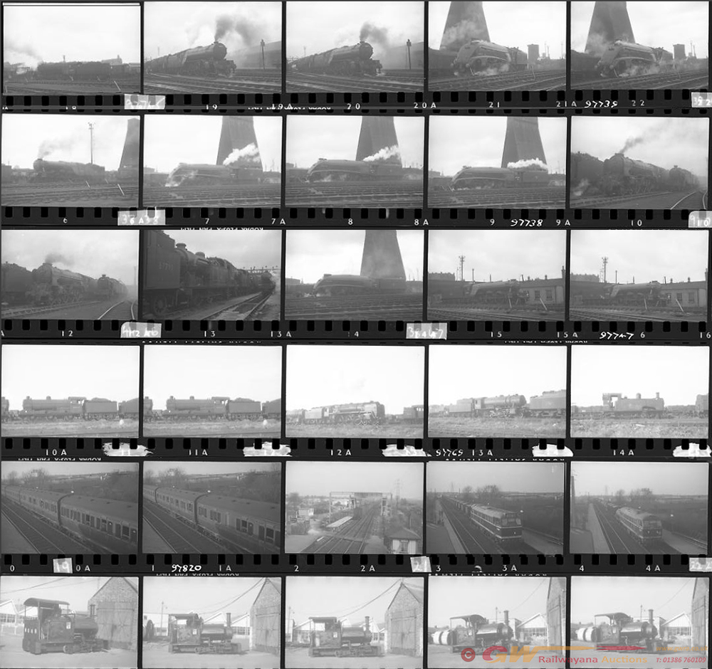 Approximately 110, 35mm Negatives. Includes Kings