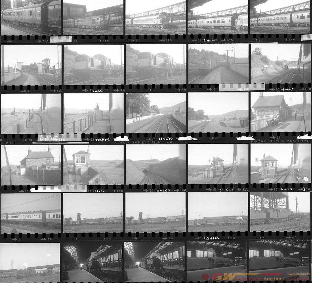 Approximately 84, 35mm Negatives. Includes