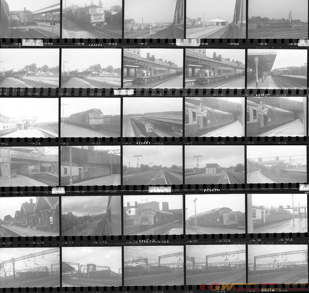 Approximately 102, 35mm Negatives. Includes Rugby,