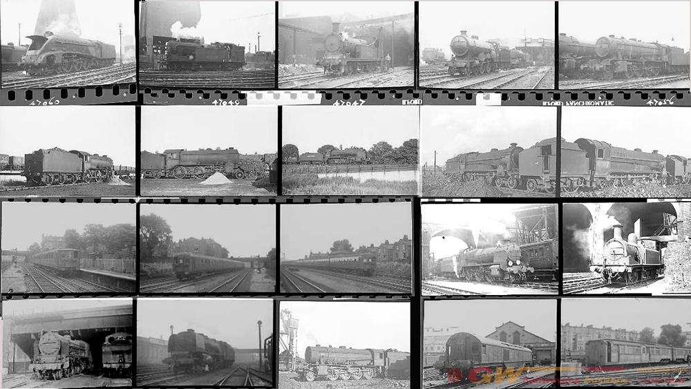 Approximately 112, 35mm Negatives. Includes Kings